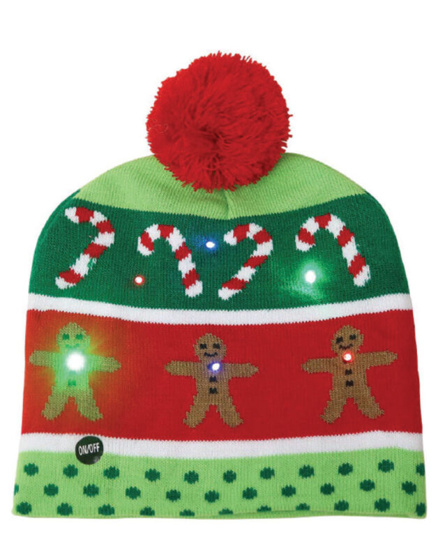 Asher & Emery light-up hat